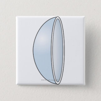 Illustration of Soft Contact Lens Pinback Button