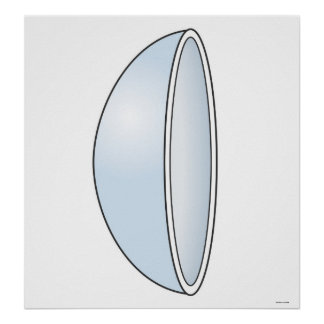 Illustration of Soft Contact Lens Poster