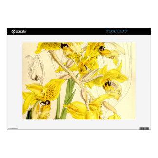 "Illustration of Stanhopea wardii 15"" Laptop Skin"