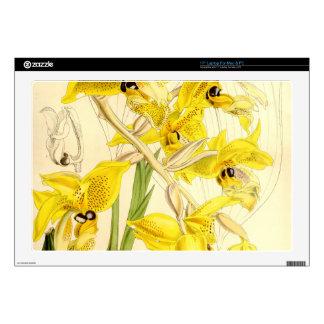 "Illustration of Stanhopea wardii Decal For 17"" Laptop"