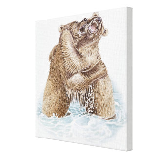 Illustration of two Brown Bears fighting in water Canvas Print