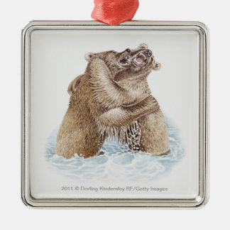 Illustration of two Brown Bears fighting in water Metal Ornament