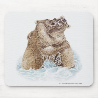 Illustration of two Brown Bears fighting in water Mouse Pad