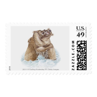 Illustration of two Brown Bears fighting in water Postage Stamp