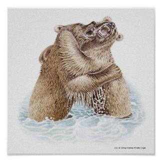 Illustration of two Brown Bears fighting in water Poster