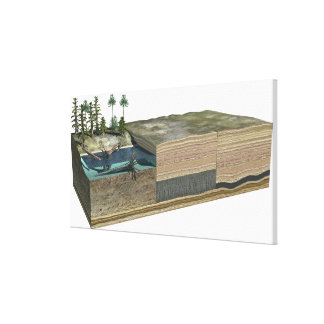 Illustration showing formation of coal canvas print