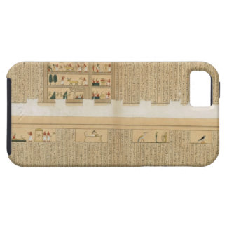 Illustrations of a Pampus manuscript with hierogly iPhone 5 Cover