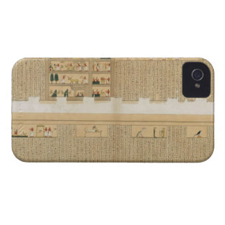 Illustrations of a Pampus manuscript with hierogly Blackberry Bold Cases