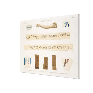 Illustrations of Hieroglyphics and the arm of a mu Stretched Canvas Print