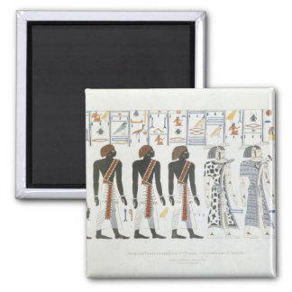 Illustrations of hieroglyphics from the Tombs of t Magnet