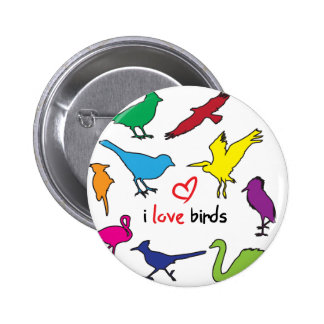 ilovebirds pin