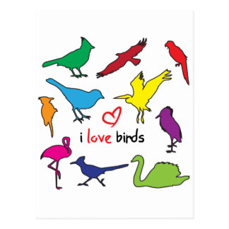 ilovebirds postcard