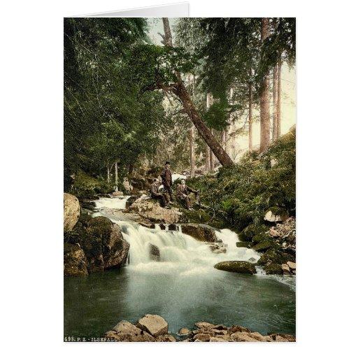 Ilse Falls, Hartz, Germany classic Photochrom Greeting Card
