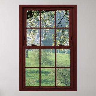 Ilusión #3 de la ventana de imagen de las flores póster