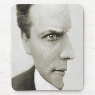 Ilusión óptica de Houdini Alfombrillas De Raton