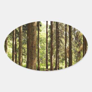 Ilusiones Spruce del árbol Pegatina Ovalada