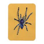 ilustración de una araña imán flexible