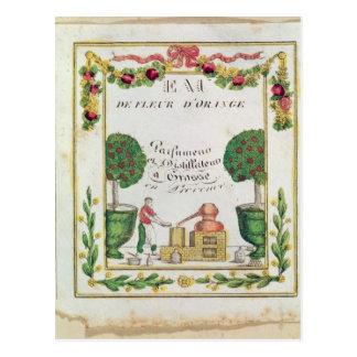 Ilustración del 'd'Orange de Eau de Fleur Postales