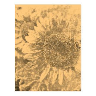 Ilustraciones #2 - postales del girasol del vintag