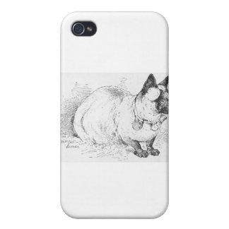 Ilustraciones bonitas del dibujo del gato siamés q iPhone 4 carcasas