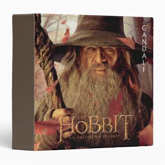 Ilustraciones de la edición limitada: Gandalf
