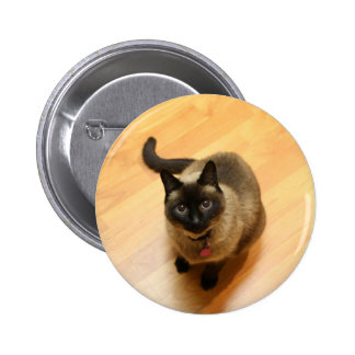 Ilustraciones de la foto del gato siamés pin