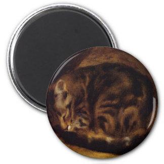 Ilustraciones de la pintura del gato el dormir iman de nevera