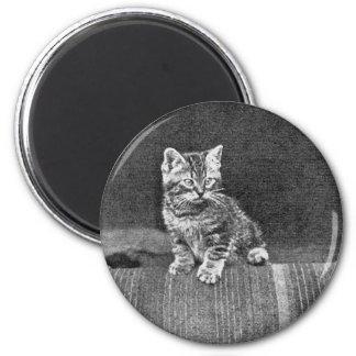 Ilustraciones de LOLcat del vintage Imán De Frigorífico