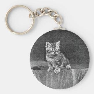 Ilustraciones de LOLcat del vintage Llavero Redondo Tipo Pin