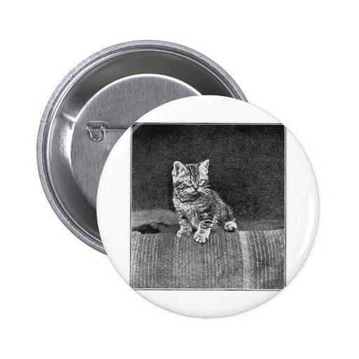 Ilustraciones de LOLcat del vintage Pins