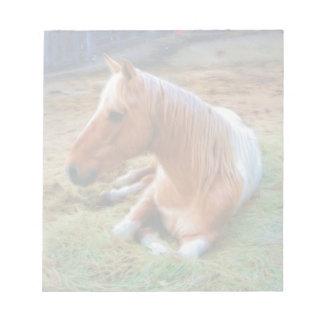 Ilustraciones de reclinación del caballo del Pinto Libreta Para Notas