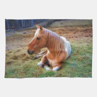 Ilustraciones de reclinación del caballo del Pinto Toalla De Cocina