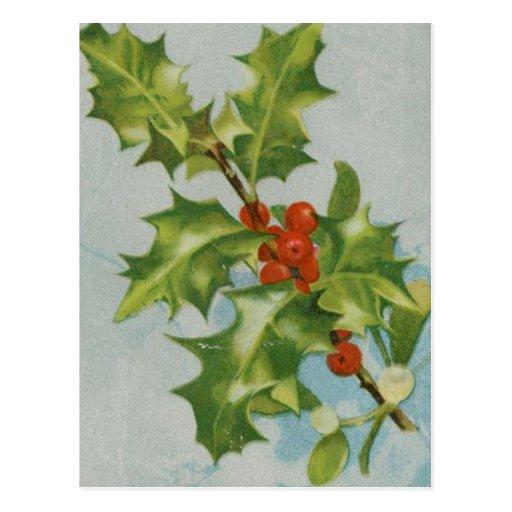 Ilustraciones del acebo del navidad del vintage postal