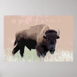 Ilustraciones del americano del búfalo del bisonte póster
