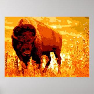 Ilustraciones del búfalo del bisonte póster