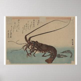 Ilustraciones del camarón y de la langosta del vin póster