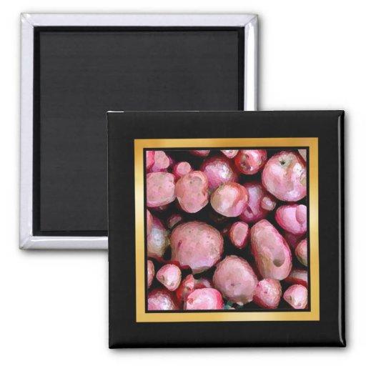 Ilustraciones del modelo o imán vegetales de la fo