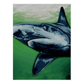 Ilustraciones del tiburón azul tarjetas postales