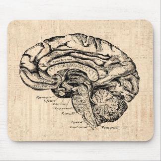 Ilustraciones Mousepad del cerebro del vintage