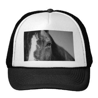 Ilustraciones negras del ojo del caballo blanco gorras