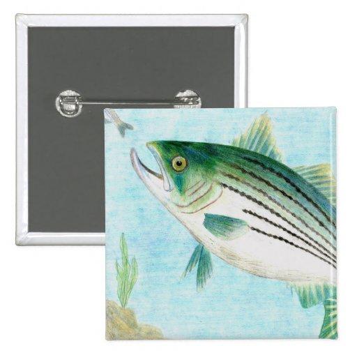 Ilustraciones que ganan de E. Vance, grado 8 Pin Cuadrada 5 Cm