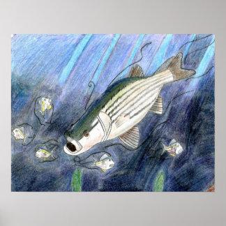 Ilustraciones que ganan de K Dumont grado 6 Impresiones