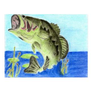 Ilustraciones que ganan por L Anderson grado 11 Postales