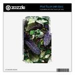 Ilustraciones sabias manchadas calcomanía para iPod touch 4G