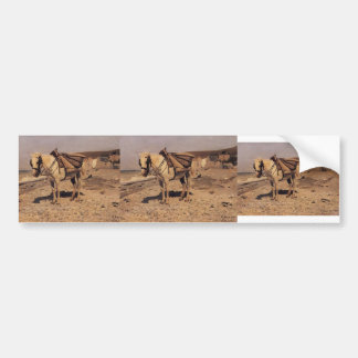 Ilya Repin- Horse for stones collecting in Vela Bumper Stickers
