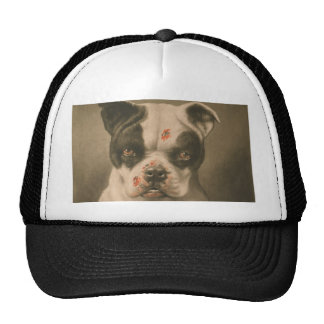 I'm a Bad Dog What Kind of Dog Are You? Trucker Hat