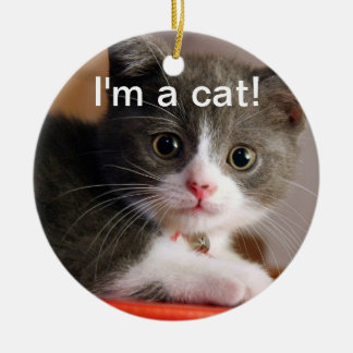 I'm a cat! Double-Sided ceramic round christmas ornament