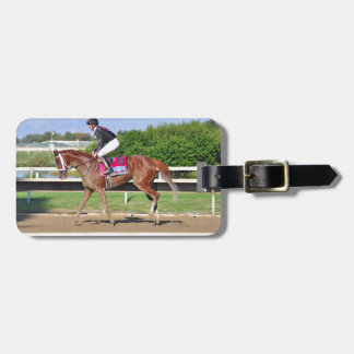 I'm a Chatterbox Wins the Cotillion Luggage Tag