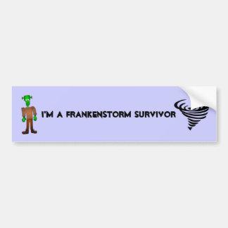 I'm A Frankenstorm Survivor Car Bumper Sticker