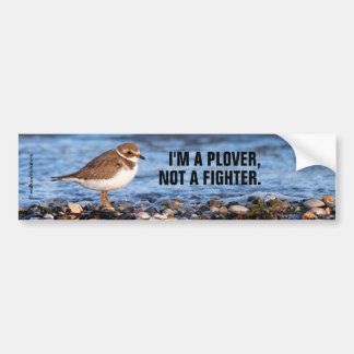 I'm a Plover, Not a Fighter: Semipalmated Plover Bumper Sticker